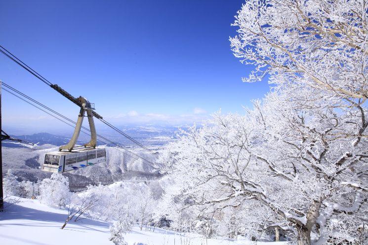 横浜から行けるスキー場