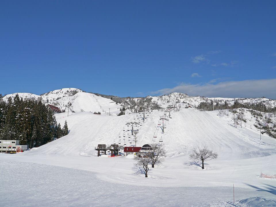HAKUBA VALLEY 栂池高原スキー場