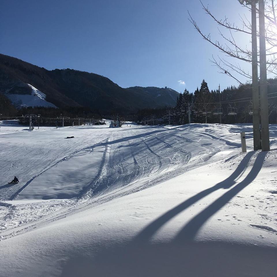 スキー場 初心者向け