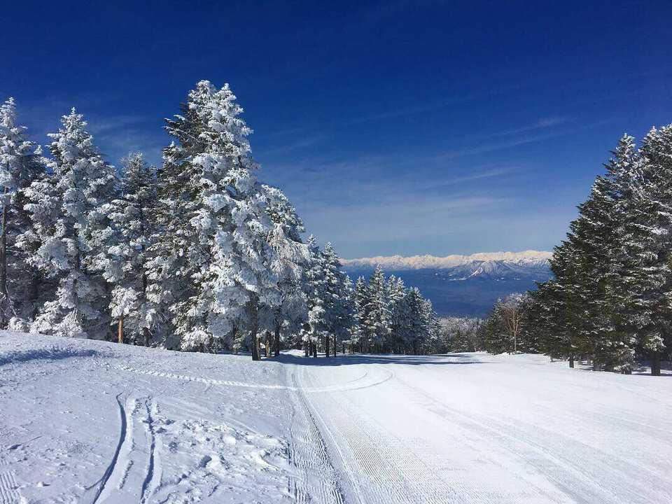 竜王スキーパーク お祭