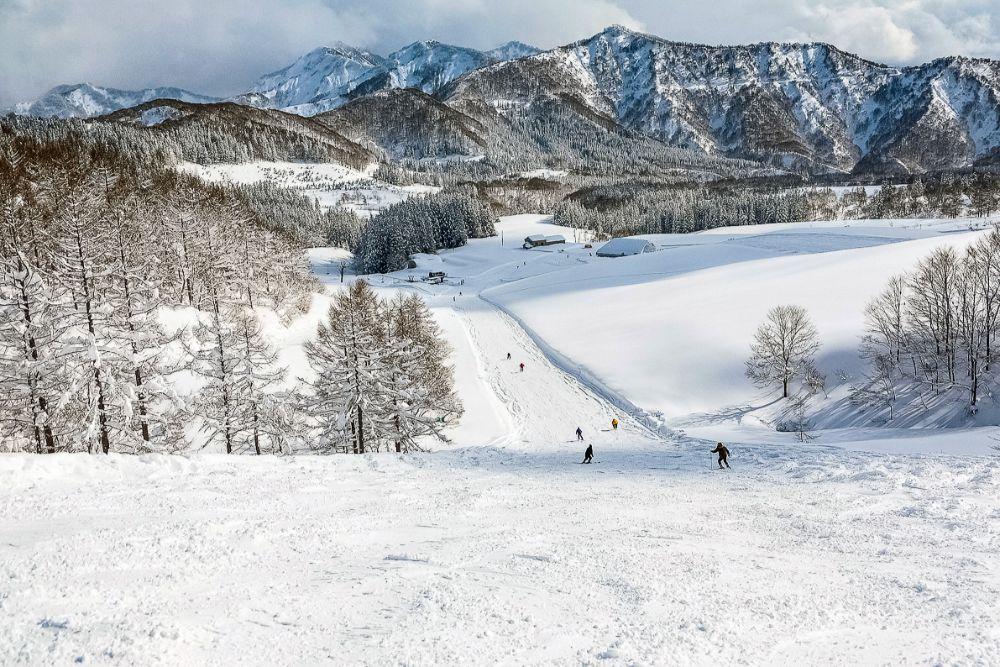 スキー 斜面