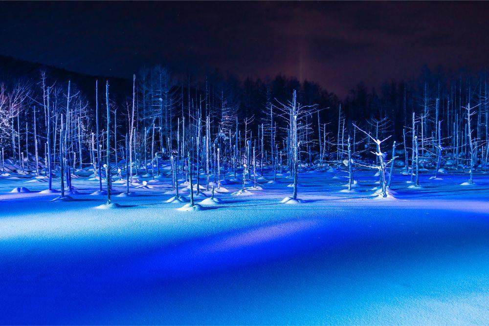 ナイター スキー場