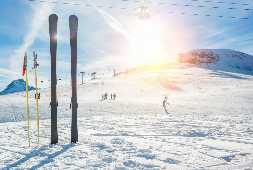 スキー 形状