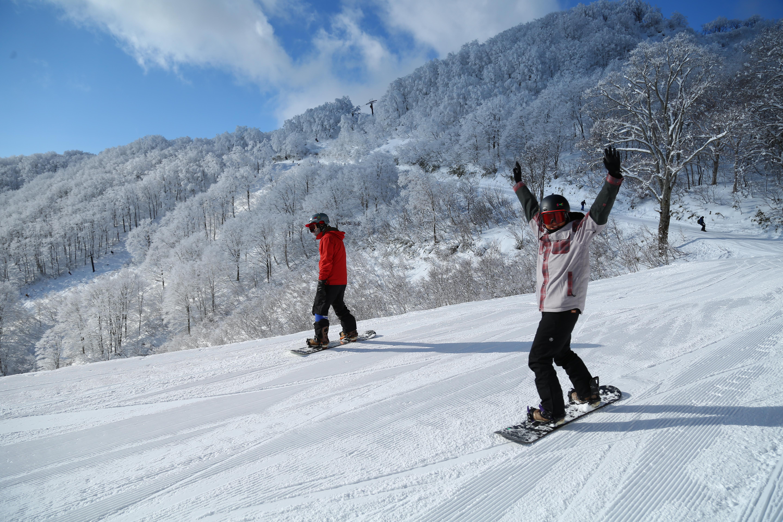 スキー 場 コルチナ 白馬